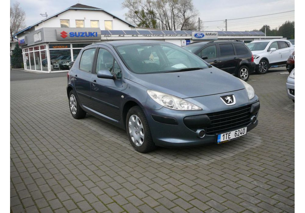 Peugeot 307 1.6.  hdi 66 kw